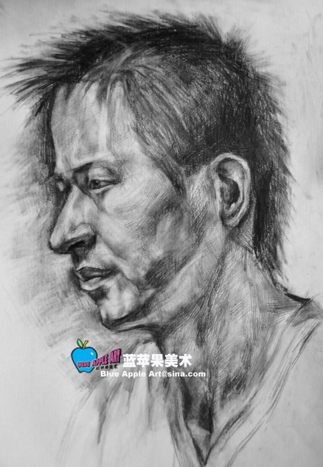 学生素描头像写生作品-蓝苹果美术-搜狐博客