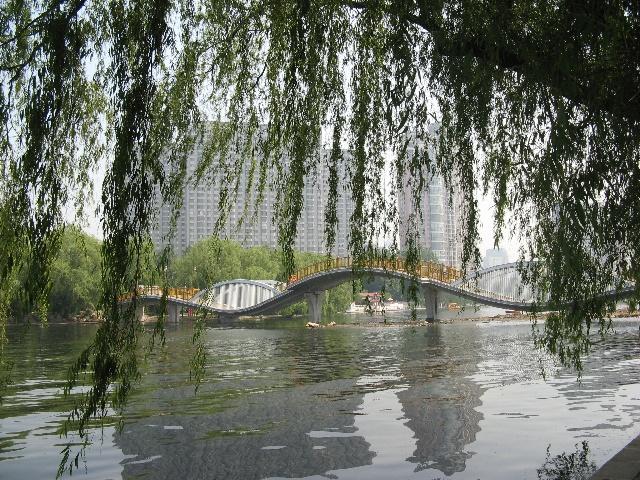 柳树 桥 船水墨画