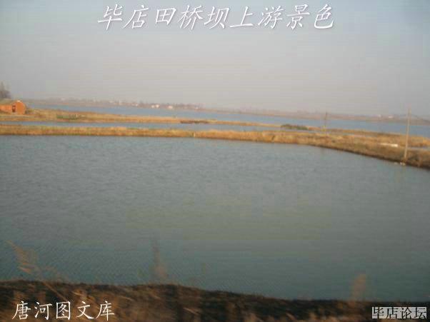 唐河图片之----毕店田桥坝上游风景