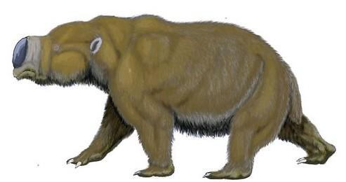 远古入侵,13种比恐龙更诡异的史前动物