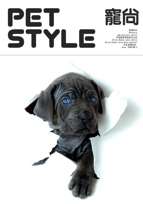 宠物风尚杂志封面