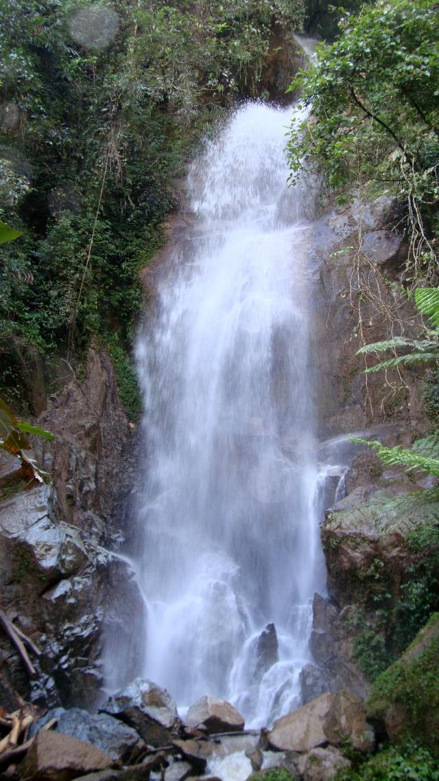 壁纸 风景 旅游 瀑布 山水 桌面 640_1137 竖版 竖屏 手机
